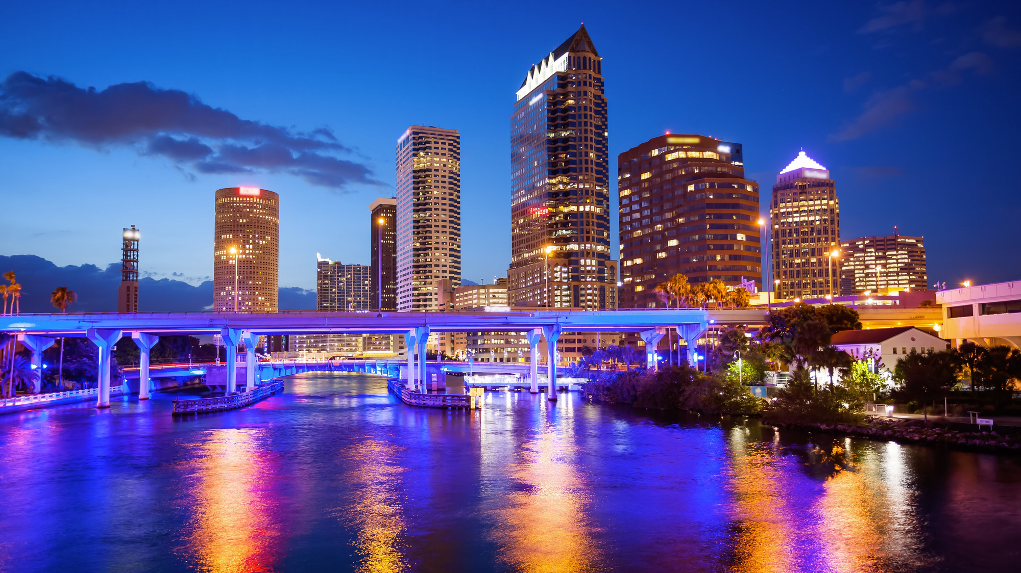 Things to Do in the Tampa Bay Area